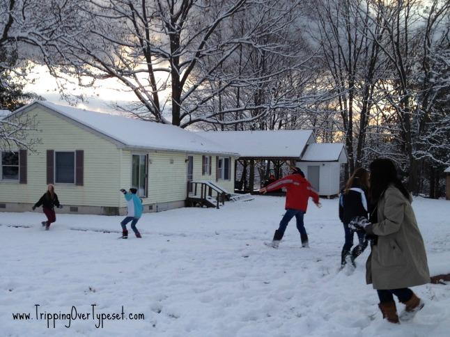 snow fight 4n
