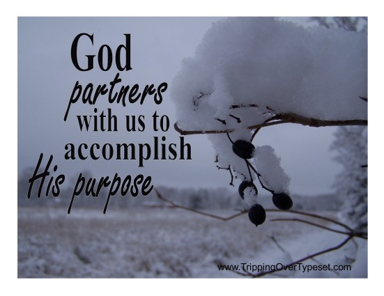 Partner with His Purpose